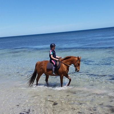 normanville-horse-riding-on-the-beach